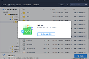 EASEUS Data Recovery Wizard v13.3.0.0(带注册机及教程)