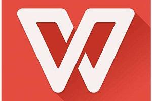 WPS Office 2019 v11.8.2.9067 专业增强版带序列号