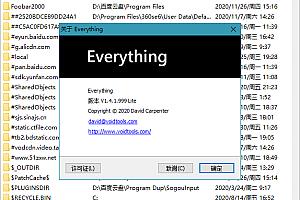 文件搜索利器 Everything 1.4.1.1003 正式版