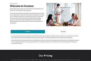 SEO网站优化团队官网模板1213