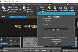 IDM UltraEdit v28.10.0 x64 中文绿色特别版