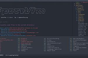 【SpaceVim v1.5.0】以模块的方式组织管理插件以及相关配置+代码自动补全+语法检查+格式化等特性