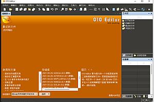 010 Editor v12.0.1 简体中文汉化破解绿色版